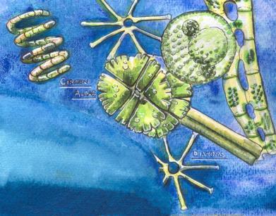 Freshwater food chain mural
