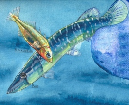 Freshwater food chain mural
