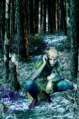 Snow queen fern daf wood crouch bpc