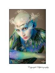 Snow queen fern head Darryl Baker bpc