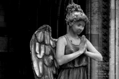 Dr Who rift bodypaint weeping angel tardis pose arch bpc
