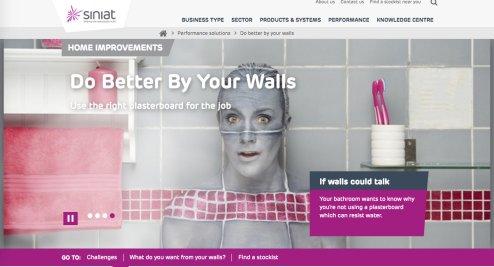Siniat bathroom wall camo paint