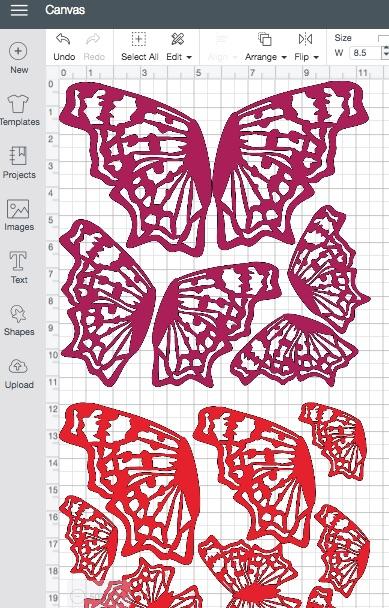 Cricut butterfly cds